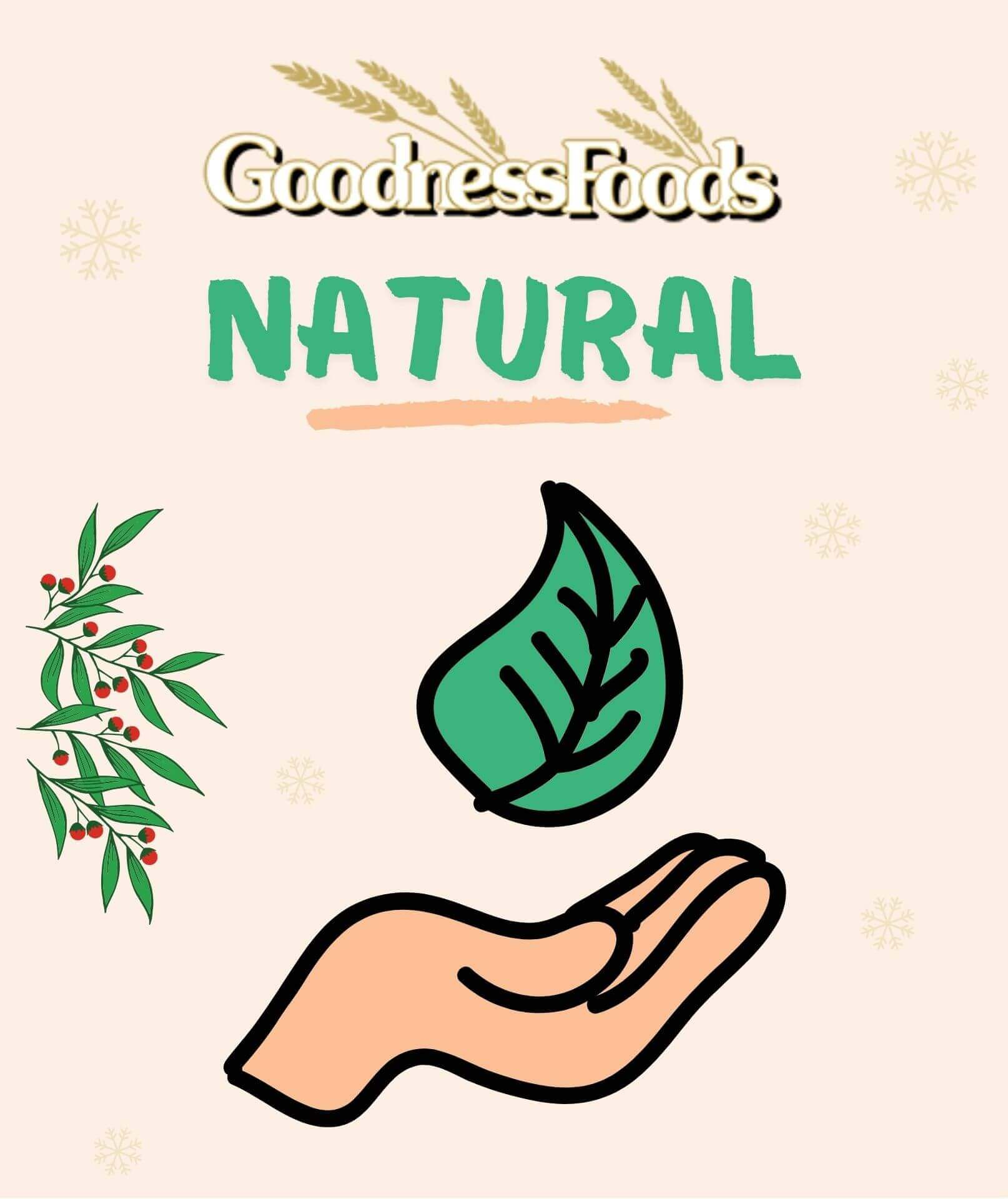 goodness-food-natural-products-1